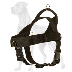 Adjustable Nylon Harness for Great Dane