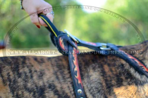 Handle on Leather Dog Harness