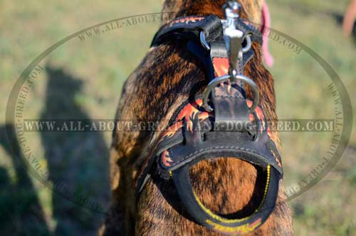 Leather Dog Harness With Ring