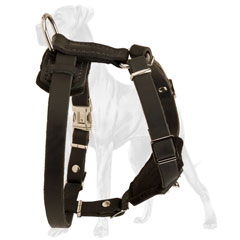 Adjustable Leather Great Dane Puppy Harness