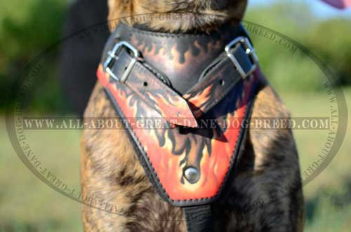 Painted Padded Leather Great Dane Chest Plate
