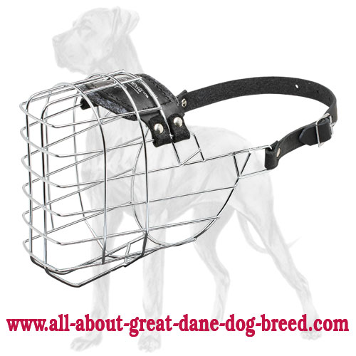 'The Silencer' Extra Large Wire Dog Muzzle For Big Dogs Like Great Dane