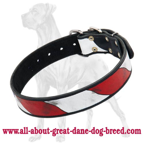 Perfect American Flag Collar for Great Dane