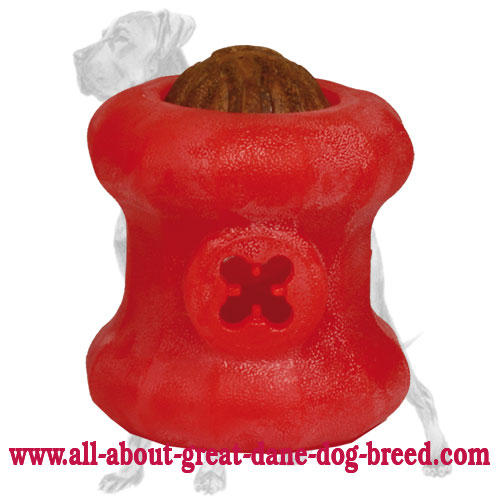 Large Rolling-Strong Foam Treat Holding Fire Plug Great Dane Toy