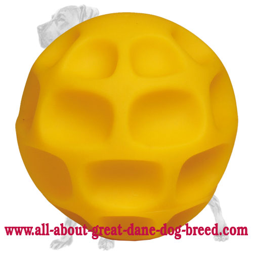 "Large ""Treat Through Game"" Tetraflex Great Dane Ball"