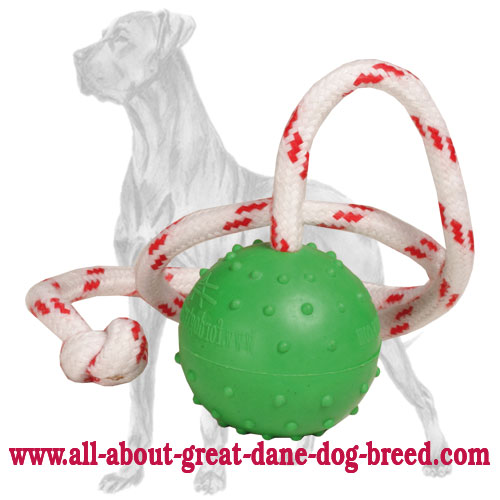 Fabulous Bright Rubber Great Dane Ball for Land and Water Activities - Small