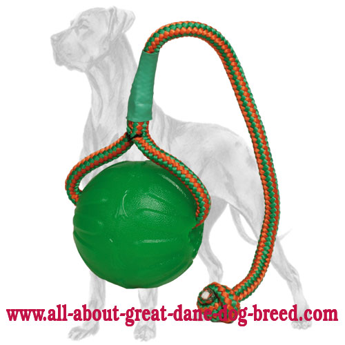 Chew Rubber Ball for Great Dane on A Rope