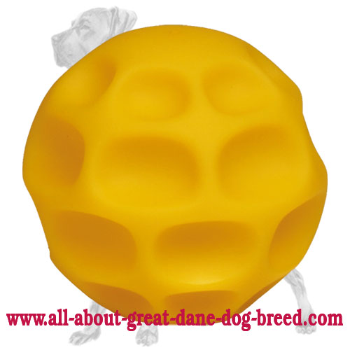 Challenging Medium Tetraflex Great Dane Toy