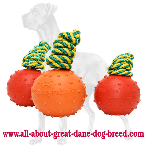 Rubber Dotted Great Dane Ball for Training and Playing - Large
