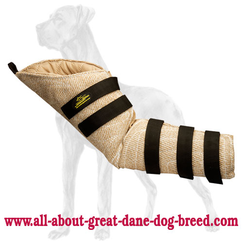 Protection Hidden Jute Bite Sleeve for Great Dane