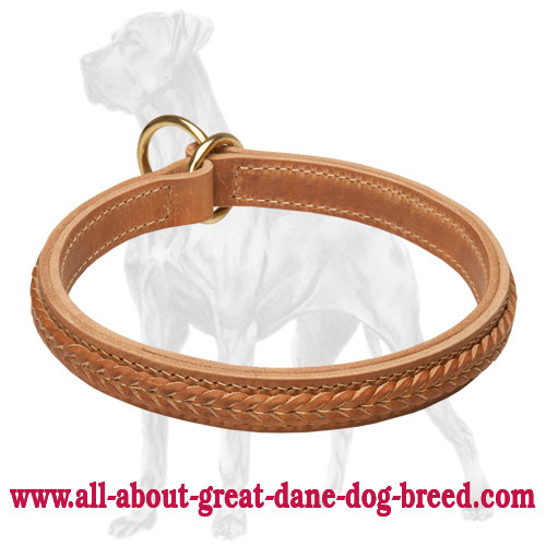 Great Dane Braided Choke Leather Collar