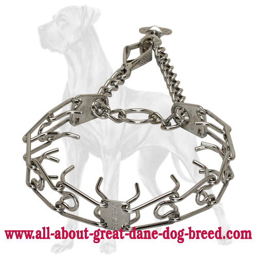 Chrome Plated Great Dane Pinch Collar with Swivel - 1/8 inch (3.25 mm)