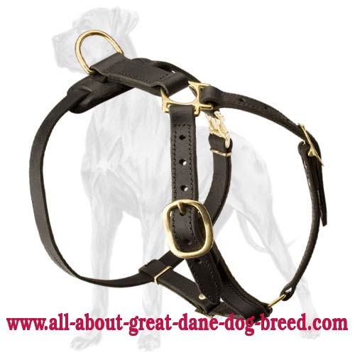 Lightweight Leather Great Dane Harness for Tracking, Pulling, Training