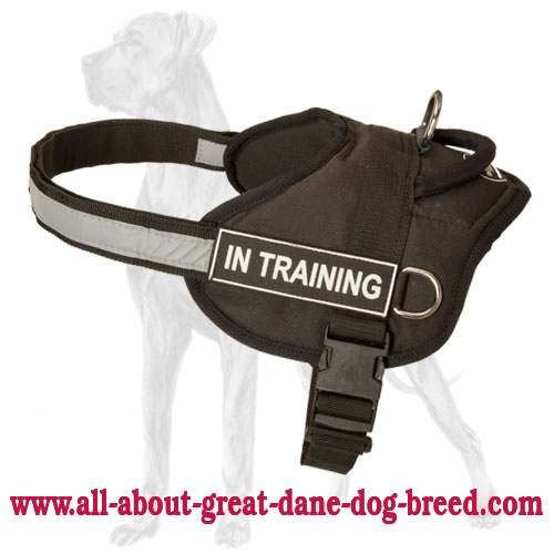 Service Nylon Great Dane Harness with Reflective Trim