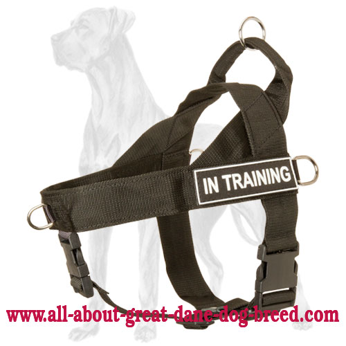 Functional Quality Nylon Great Dane Harness