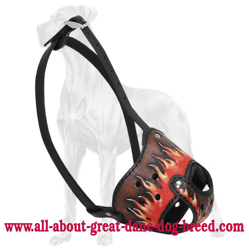 New Exclusive Design Leather Great Dane Muzzle with Handpainted Flames