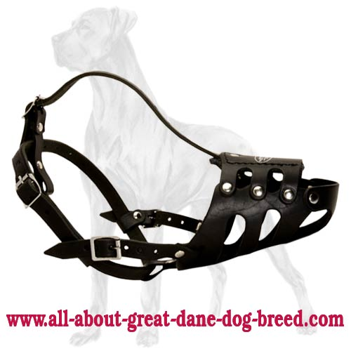 Anti-Barking Genuine Leather Muzzle for Great Dane