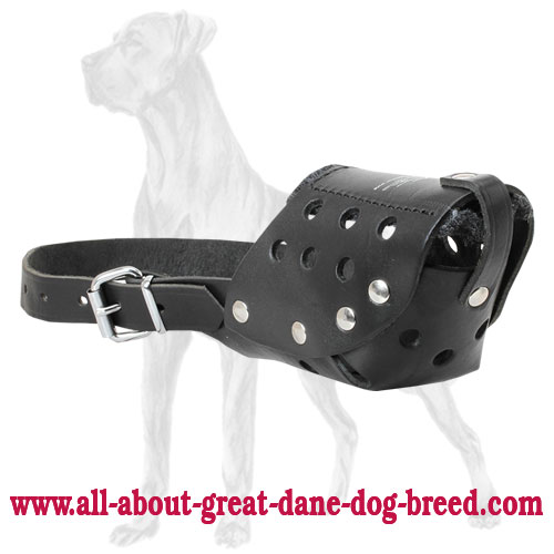 Easy Adjustable Leather Great Dane Muzzle for Walking