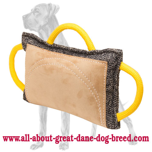 french linen and leather great dane bite pillow for advanced