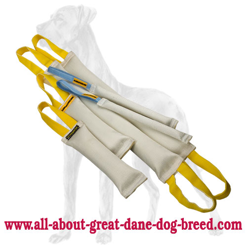 Two Sets of Fire Hose Great Dane Bite Tugs Sets in One