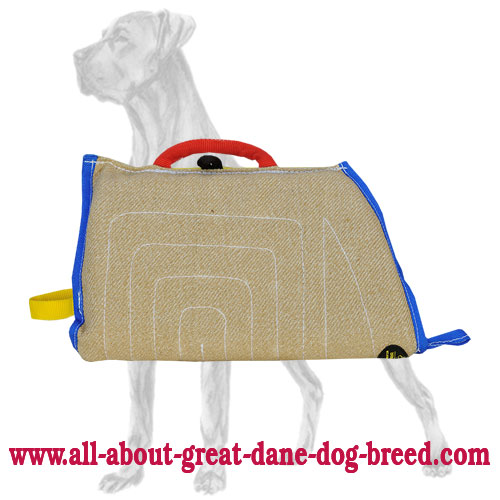 Protection Jute Bite Sleeve for Great Dane Puppy Training