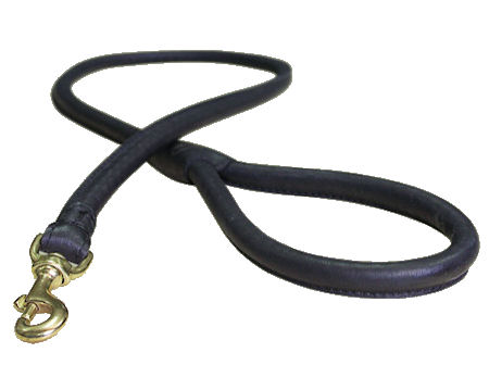 Walking Leather Dog Lead for Great Dane