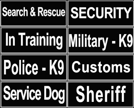 Removable ID Patches For Canine Harness and Collars