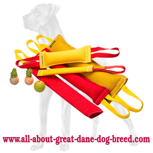 Ultimate Training Set of French Linen Great Dane Bite Tugs