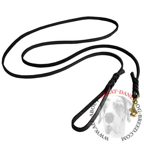 Great Dane leather leash with braided decorations