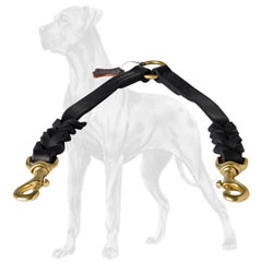 Walking braided leather Great Dane coupler