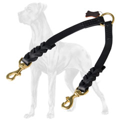 Stylish leather Great Dane coupler with braids