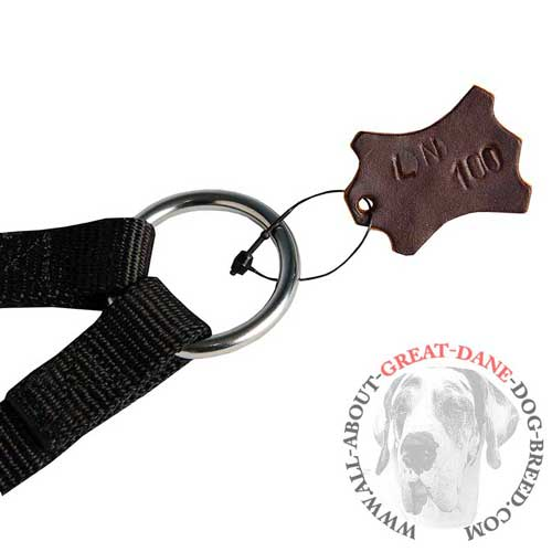 Nylon Great Dane Coupler Leash with Nickel Plated Ring