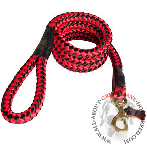 Red Nylon Cord Great Dane Leash with Handle and Brass Snap Hook
