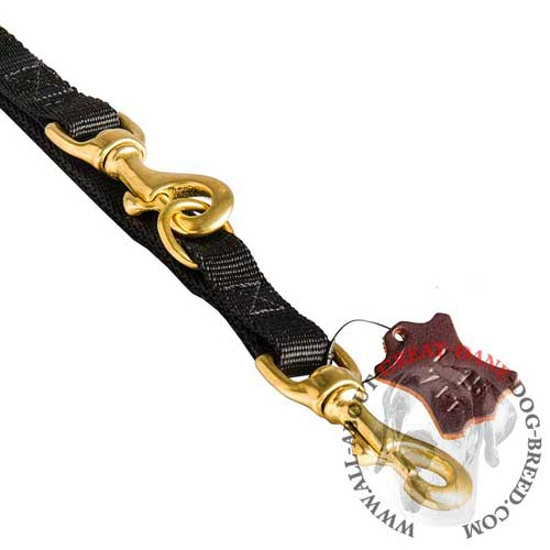 Multi-Mode Great Dane leash with brass snap hooks