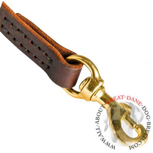 Rust-resistant brass snap hook for Great Dane leash