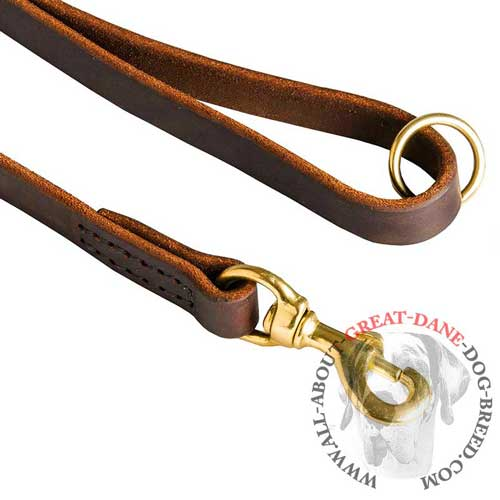 Great Dane leash with floating O-Ring