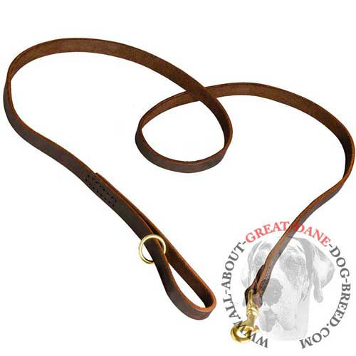 Genuine leather Great Dane leash