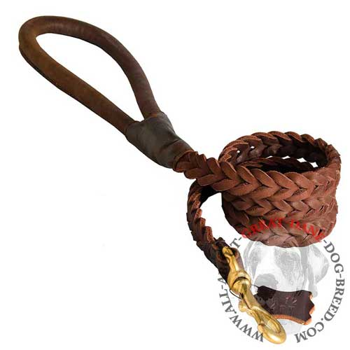 Great Dane braided leather leash