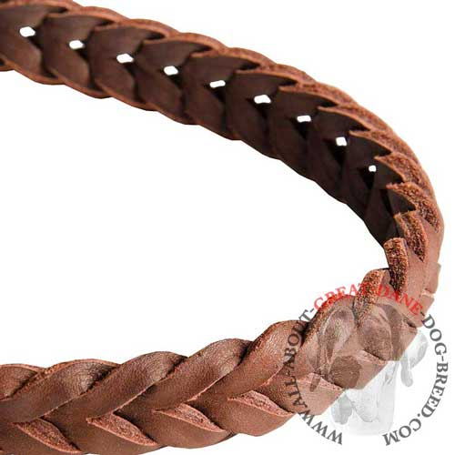 Fully braided leather leash for Great Dane
