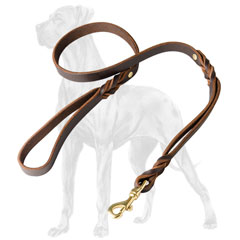 Superior Great Dane leash with extra handle