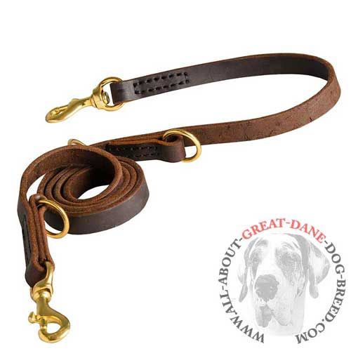 Versatile Great Dane adjustable leather leash