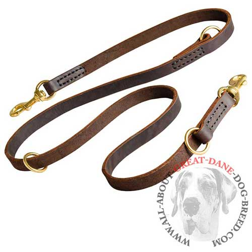 Walking and Training Great Dane adjustable leather leash