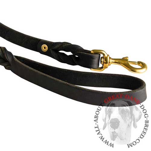 Reliable leather leash with durable fittings for Great  Dane
