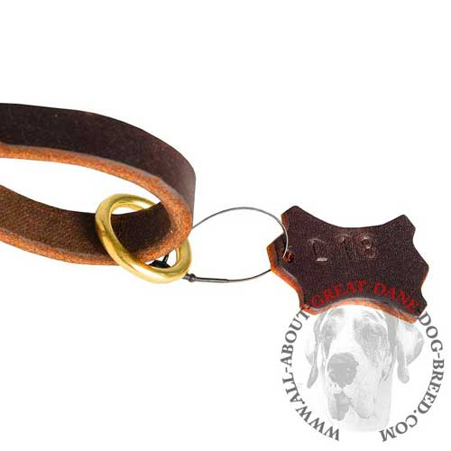 Leather Dog Lead with O-Ring