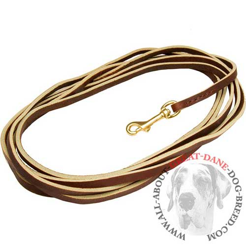Leather Dog Lead Brown Color