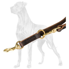 Multi-Functional Leather Dog Lead