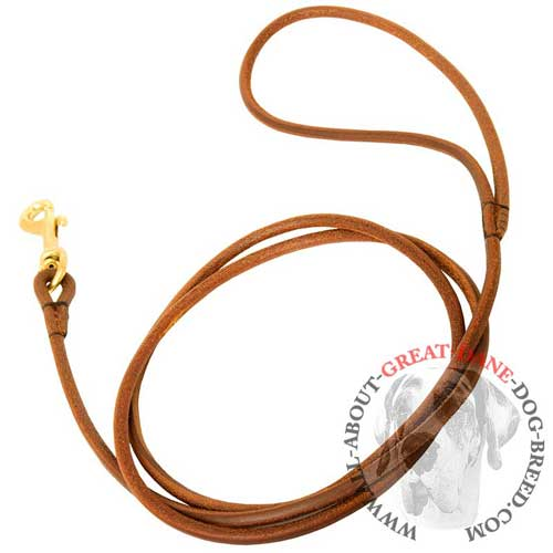 Round Dog Leash