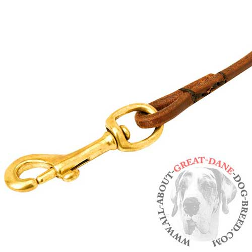 Leather Dog Lead with Brass Hook