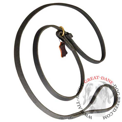 Leather Dog Leash and Choke Collar Combination