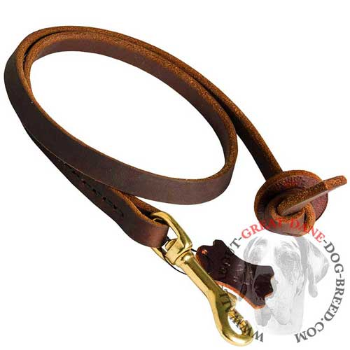 Leather Dog Leash for Control
